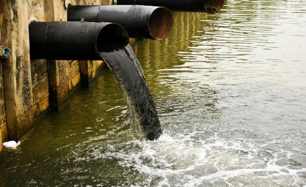 Porto Green Inquinamento Ambientale Marino