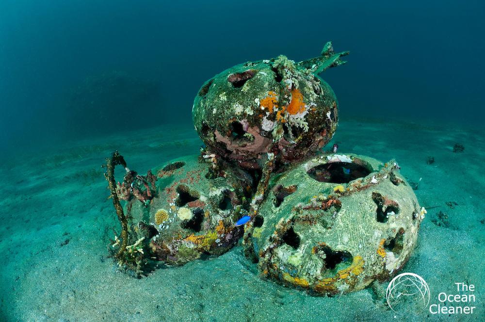 Ocean Cleaner Green Reefs